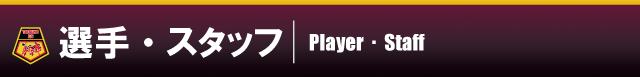 playerstaff
